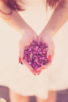 Фото Розовые лепестки в ладонях девушки