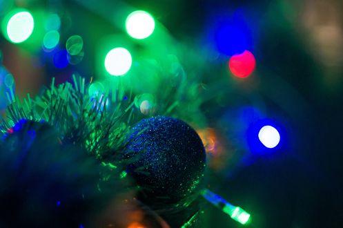 Фото Синий новогодний шарик на еловой ветке на фоне блик гирлянды