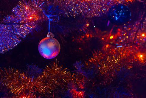 Фото Шарики на ветке новогодней елки с горящей гирляндой