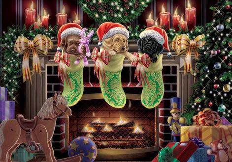 Фото Трое щенков в новогодних шапках мило сидят в рождественских носках для подарков, тихо потрескивает камин, сверкает огнями елка, подарки ждут, когда их откроют