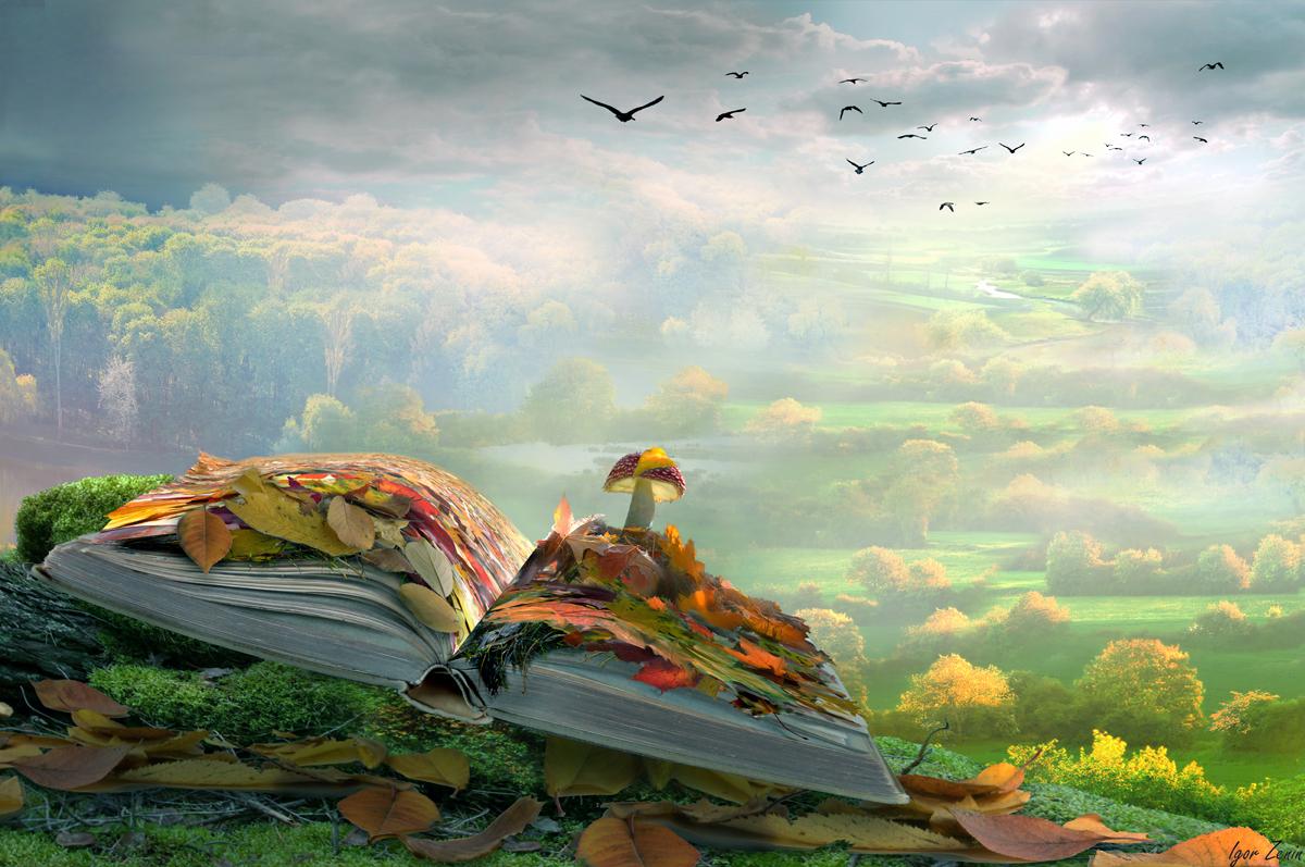 Фото Работа Времена года, на открытой книге, усыпанной листьями, растет гриб, фотохудожник Igor Zenin