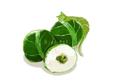 Фото Зеленая кошка лежит на пирожке из листов капусты и риса, by @jedo0401
