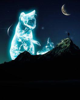 Фото Человек, стоящий на вершине горы, смотрит на кошку, сотканную из дыма в ночном небе (© chucha), добавлено: 13.01.2018 00:34