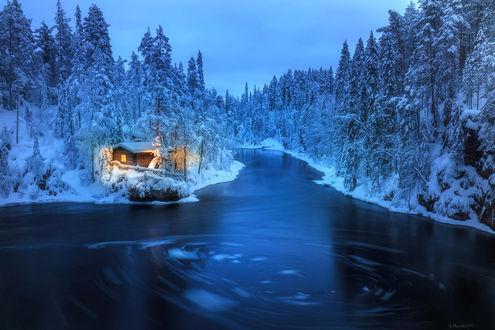 Фото Ночной домик в снежном лесу в Финляндии, фотограф Andrew Bazanov (© zmeiy), добавлено: 13.01.2018 13:50
