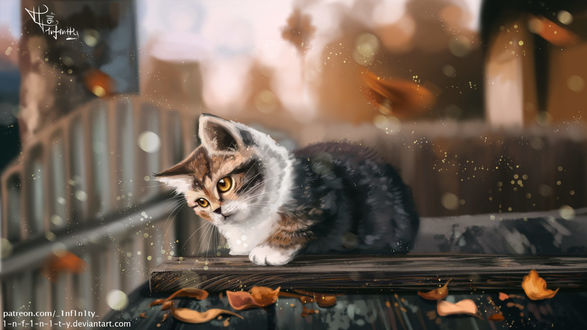 Фото Котенок лежит на деревянной поверхности, by 1-N-F-1-N-1-T-Y