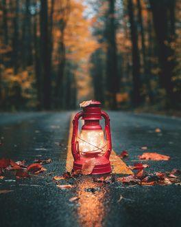 Фото Зажженный фонарь стоит посреди дороги и осенних листьев
