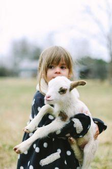 Фото Маленькая девочка держит на руках козленка
