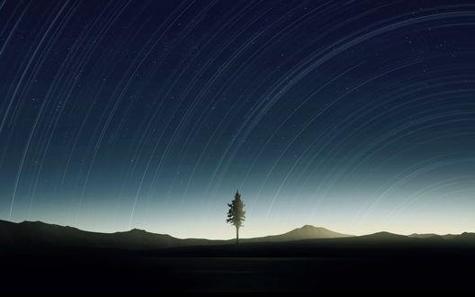 Фото Одинокое дерево на берегу озера на фоне зодиакального света