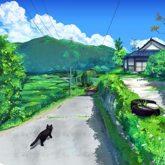 Фото Черный котенок на дороге, by K. Hati