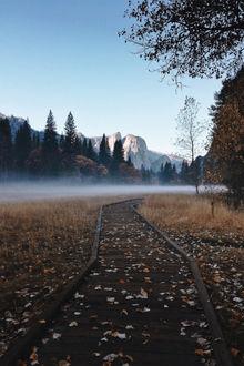 Фото Тропа, усеянная осенними листьями, ведет через туманное поле к лесу и горам