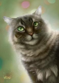Фото Полосатая кошка с зелеными глазами, by blizsea