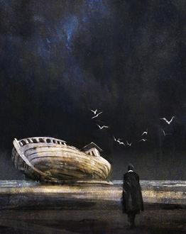 Фото Человек в плаще стоит на берегу и смотрит на разрушенный корабль, над которым парят чайки, by SebMcKinnon