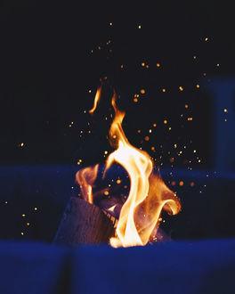 Фото Горящий костер в ночи, фотограф David
