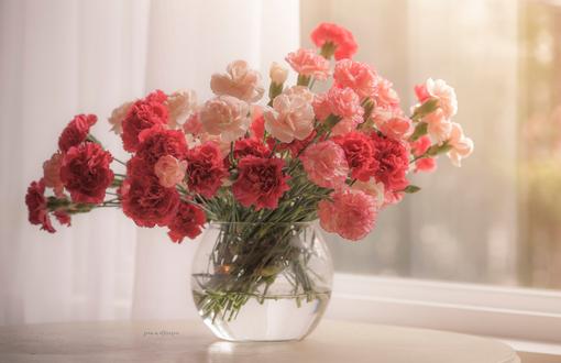 Фото Букет гвоздик в вазе у окна, by Joan