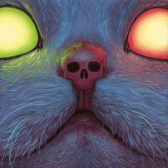 Фото Кошачья мордочка со светящимися глазами и носиком-черепом, by Casey Weldon