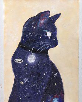Фото Рисунок космического кота