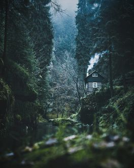 Фото Домик в лесу на обрыве перед рекой