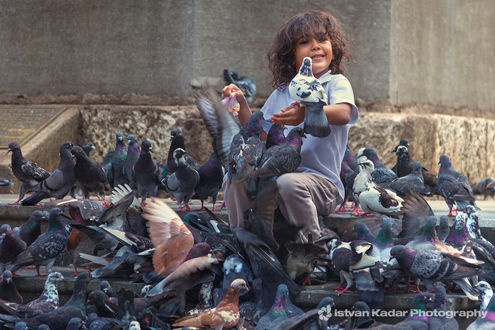 Фото Ребенок сидит среди голубей, фотограф Istvan Kadar