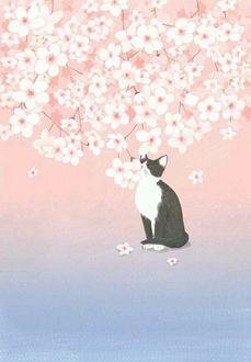 Фото Кошка сидит под весенней цветущей веткой дерева