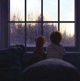 Фото Мальчик и собака смотрят в окно, за которым идет дождь, by 3hil
