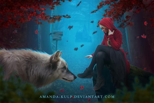 Фото Девушка в капюшоне и белый волк на фоне, падающих листьев клена, by Amanda Kulp
