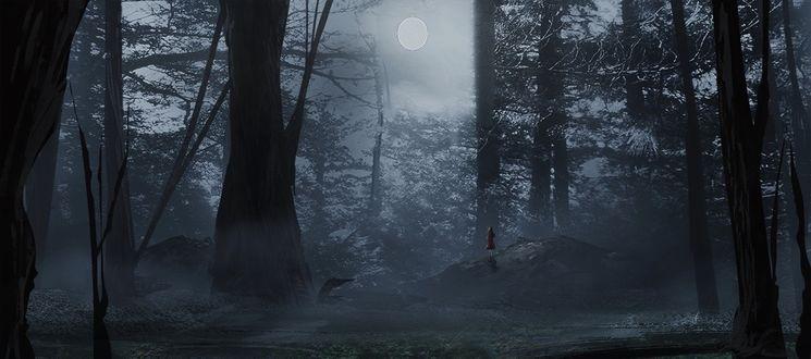 Фото Девочка в красном смотрит на полную луну, стоя на пригорке в лесу, окутанном туманом