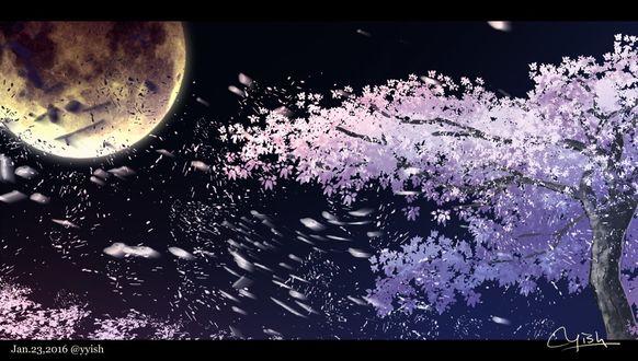 Фото Цветущее дерево сакуры на фоне неба с полной луной, by yyish