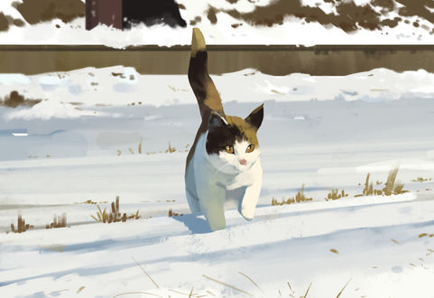 Фото Кошка идет по снегу, by Shin jong hun