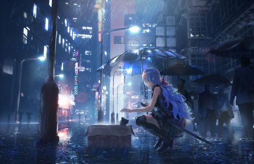Фото Девушка сидит перед кошкой, выглядывающей из коробки, на улице ночного дождливого города