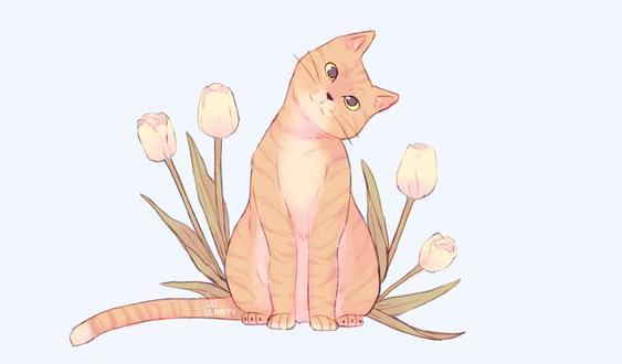 Фото Кошка с тюльпанами