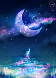 Фото Силуэт оленя, стоящего на зеркальной поверхности на фоне ночного неба с луной, by sugarmints