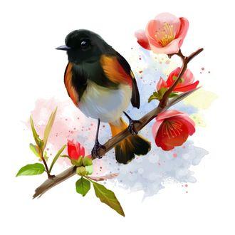 Фото Птица на весенней цветущей ветке, by Kajenna