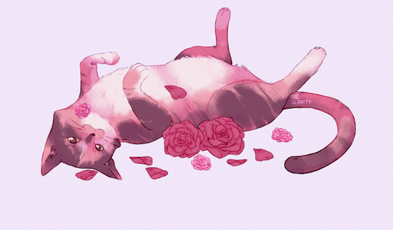 Фото Кошка лежит рядом с розами