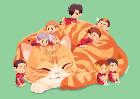 Фото Дети сидят на и возле спящей кошки