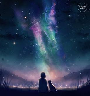 Фото Девочка с кошкой смотрят на ночное небо, by sugarmints