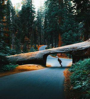 Фото Парень на скейте едет по дороге
