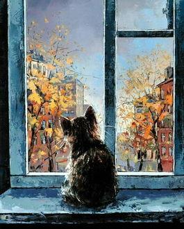 Фото Котенок сидит на подоконнике и смотрит на осеннее ненастье за окном