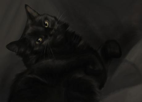 Фото Желтоглазая черная кошка, by SiiroiToriorika