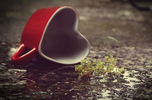 Фото Чашка в форме сердечка лежит на земле