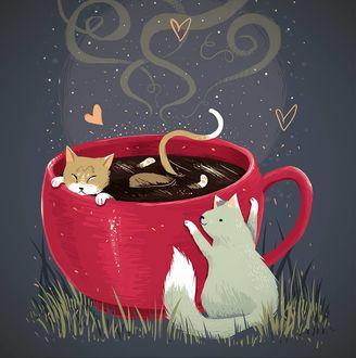 Фото Чашка кофе с кошкой в ней