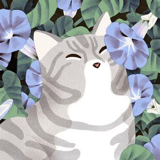 Фото Кошка в голубых цветах