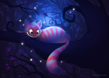 Фото Cheshire Cat / Чеширский Кот из сказки Alice in Wonderland / Алиса в стране чудес, by autogatos