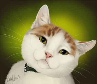 Фото Бело-рыжий кот на зеленом фоне, by Bear-hybrid