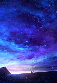 Фото Кошка на крыше на фоне ночного облачного неба, by mks