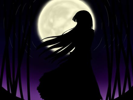 Фото Силуэт девушки на фоне полной луны