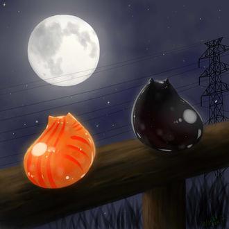Фото Черный и рыжий коты сидят на фоне полной луны над проводами