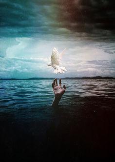 Фото Рука утопающего тянется к белому голубю