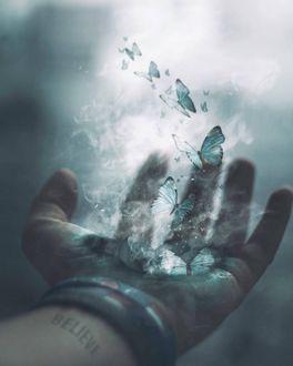 Фото Голубые бабочки вылетают из руки