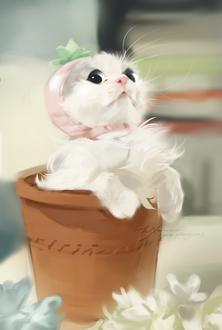 Фото Белый котенок в шапочке с бантиком сидит в цветочном горшке, by Wjackal