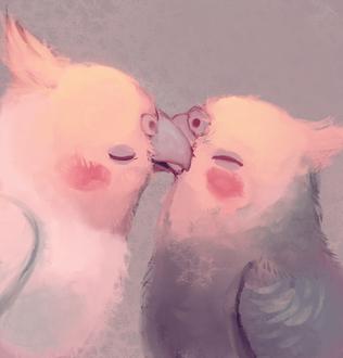 Фото Два целующихся попугайчика